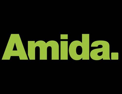 Chameleon-i Recruitment Software + Amida