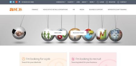 Screenshot of Amdas Website