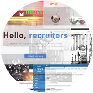 Career Portals & Website Integration